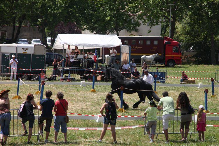Jouques equestrian festival