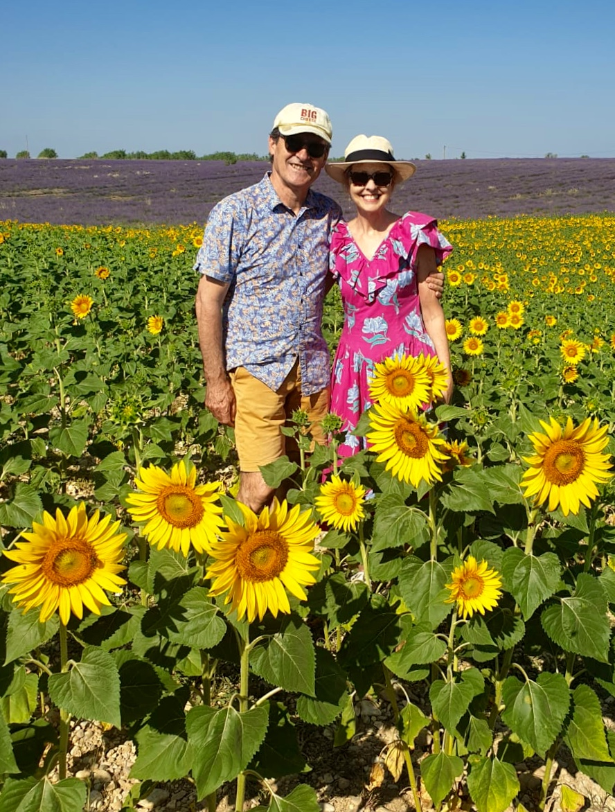 Sunflowers in Valensole